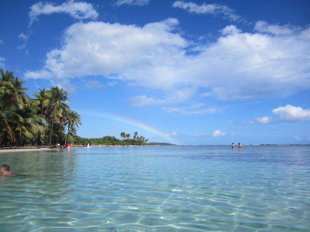 Bois Jolan, Guadeloupe