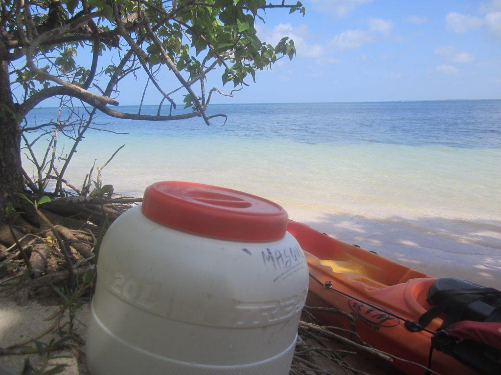 Promenade en Kayak en Guadeloupe